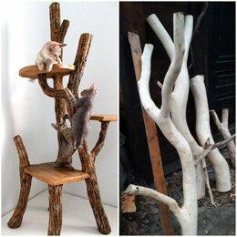 Когтеточки и комплексы  - Когтеточка из дерева деревянная кошкино дерево , 0