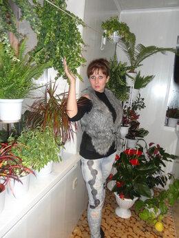 Комнатные растения - Эсхинантус, 0