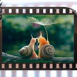 Рукоделие, поделки и сопутствующие товары - Видеоролик из Ваших фото и видео, 0
