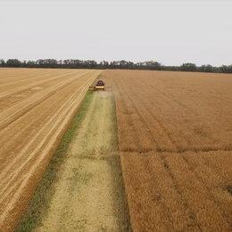 Сельское хозяйство -  Агрохолдинг   8000  ГА   в  Черноморском  районе    , 0