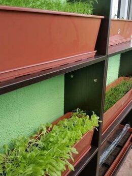 Тумбы - шкаф стеллаж для рассады на балкон, 0