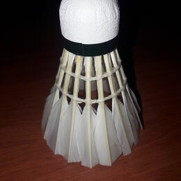 Воланы - Продаю перьевые воланы для бадминтона, 12 шт, 0