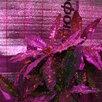 Фитолампы 50,60 вт. 220v фито матрицы 20/30/50вт по цене 200₽ - Аксессуары и средства для ухода за растениями, фото 5