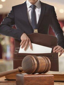 Финансы, бухгалтерия и юриспруденция - Юрист/Адвокат, иски, заявления,…, 0