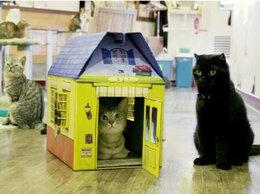 Когтеточки и комплексы  - Домик для кошки из картона, 0