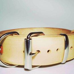 Ошейники  - Кожаный ошейник для собак + адресник, ширина 4 см., 0
