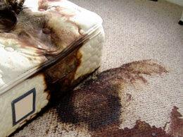 Бытовые услуги - Дезинфекция квартиры после смерти , а также…, 0