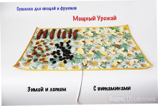 Сушилка для овощей и фруктов Мощный Урожай, 55х60 см. по цене 990₽ - Прочая техника, фото 0
