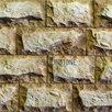 Кирпич Дворцовый большой  по цене 550₽ - Облицовочный камень, фото 13