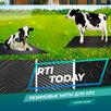 Резиновые маты для коров и КРС по цене 101₽ - Прочие товары для животных, фото 0