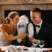 Банкетный зал для свадьбы по цене 3500₽ - Украшения и бутафория, фото 14