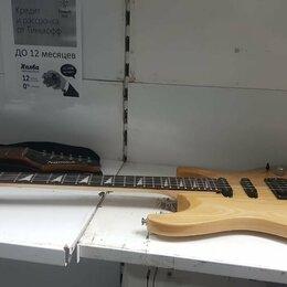 Электрогитары и бас-гитары - Электрогитара Alina Pro Мaster  , 0