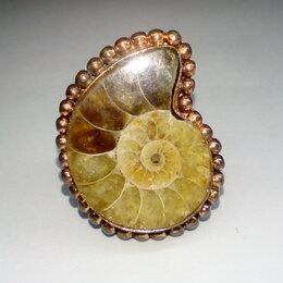 Кольца и перстни - Кольцо аммонит натуральный, размер кольца 19,5, 0