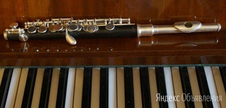 Флейта пикколо Brahner PF880S (Китай + США) по цене 8000₽ - Флейты, фото 0