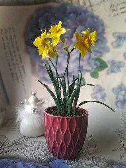 Сувениры - Нарциссы из холодного фарфора, 0