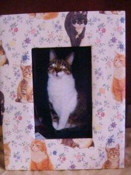 Фоторамки - Рамка для фото и альбом Кошки Англия винтаж, 0