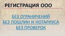 Финансы, бухгалтерия и юриспруденция - Регистрация ООО, под ключ без ограничений, 0