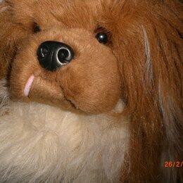 Мягкие игрушки - Мягкая игрушка собака пекинес, 0