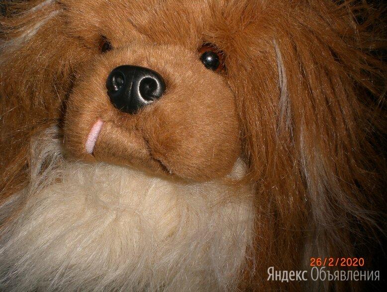 Мягкая игрушка собака пекинес по цене 1000₽ - Мягкие игрушки, фото 0