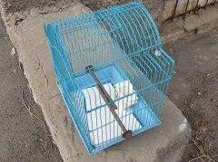 Лежаки, домики, спальные места - Клетка для птицы, 0