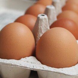 Продукты - Яйца крупные, свойские., 0