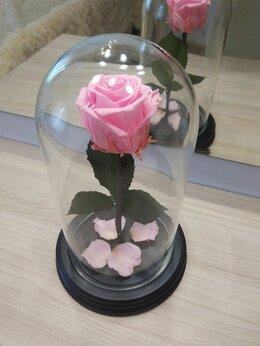 Цветы, букеты, композиции - Роза в колбе, 0
