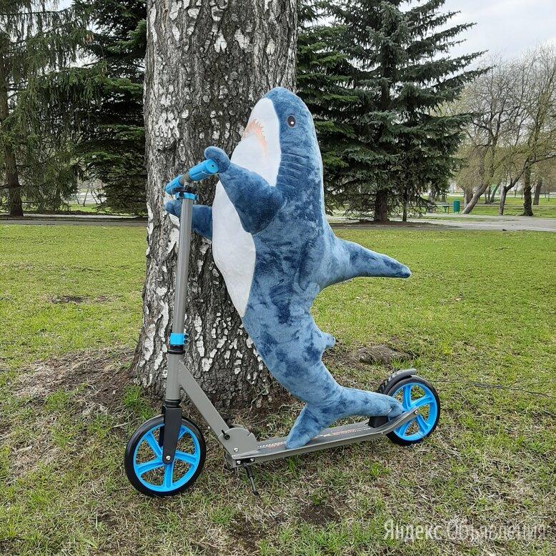 Акула блохэй 100см, синяя по цене 1300₽ - Мягкие игрушки, фото 0