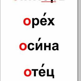 """Дидактические карточки - Таблицы """"Словарные слова"""" (64 шт, формат А3) лам, 0"""