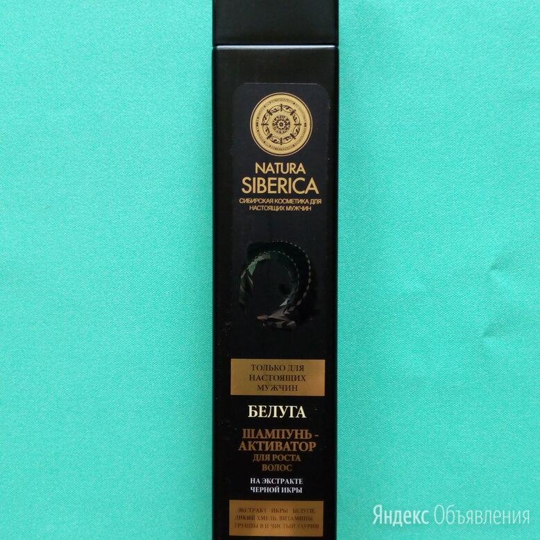 Мужской шампунь-активатор роста волос Белуга 250мл Natura Siberica по цене 220₽ - Шампуни, фото 0