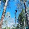 Чистка участков!спил деревье любой сложности.  по цене 500₽ - Бытовые услуги, фото 4