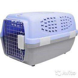 Транспортировка, переноски - Прокат. Переноска для кошки или собачки, щенка, средняя, 0