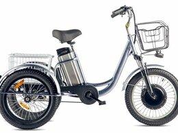 Велосипеды - Трицикл Eltreco Porter Fat 500 (Серебристый-2409), 0