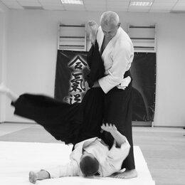 Сертификаты, курсы, мастер-классы - Тренировки по Айкидо в Волгограде для взрослых и детей, 0