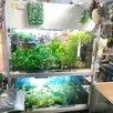 Аквасалон Водный Мир по цене 4500000₽ - Торговля, фото 8