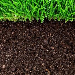Субстраты, грунты, мульча - Земля для газонов, 0