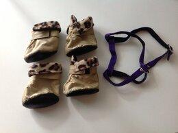 Одежда и обувь - Собачьи ботинки и шлейка, 0