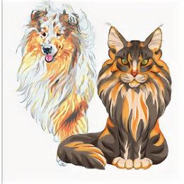 Услуги для животных - Стрижка собак и кошек , 0