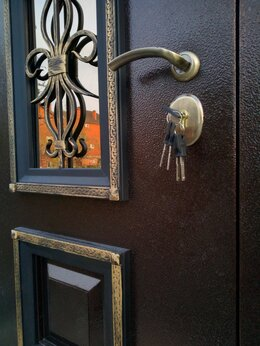 Входные двери - Входная дверь Венеция с ковкой. Ясень жемчуг,…, 0