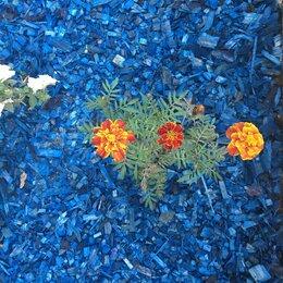 Садовые дорожки и покрытия - Щепа декоративная синяя, 0
