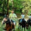Конные прогулки в Сочи по цене 2500₽ - Экскурсии и туристические услуги, фото 2