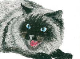 """Картины, постеры, гобелены, панно - Рисунок """"Кошка"""" картина масляная пастель бумага…, 0"""