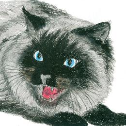 """Картины, постеры, гобелены, панно - Рисунок """"Кошка"""" картина масляная пастель бумага 28,5х20 см Гаврилин Е.Г. , 0"""