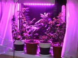 Аксессуары и средства для ухода за растениями - Мини фитосветильник для парников и выращивания…, 0