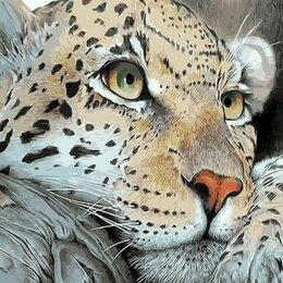Раскраски и роспись - Картина по номерам на холсте-малыш тигра, 0