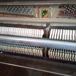 Аккордеоны, баяны, гармони - аккордеон кампанелла, 0