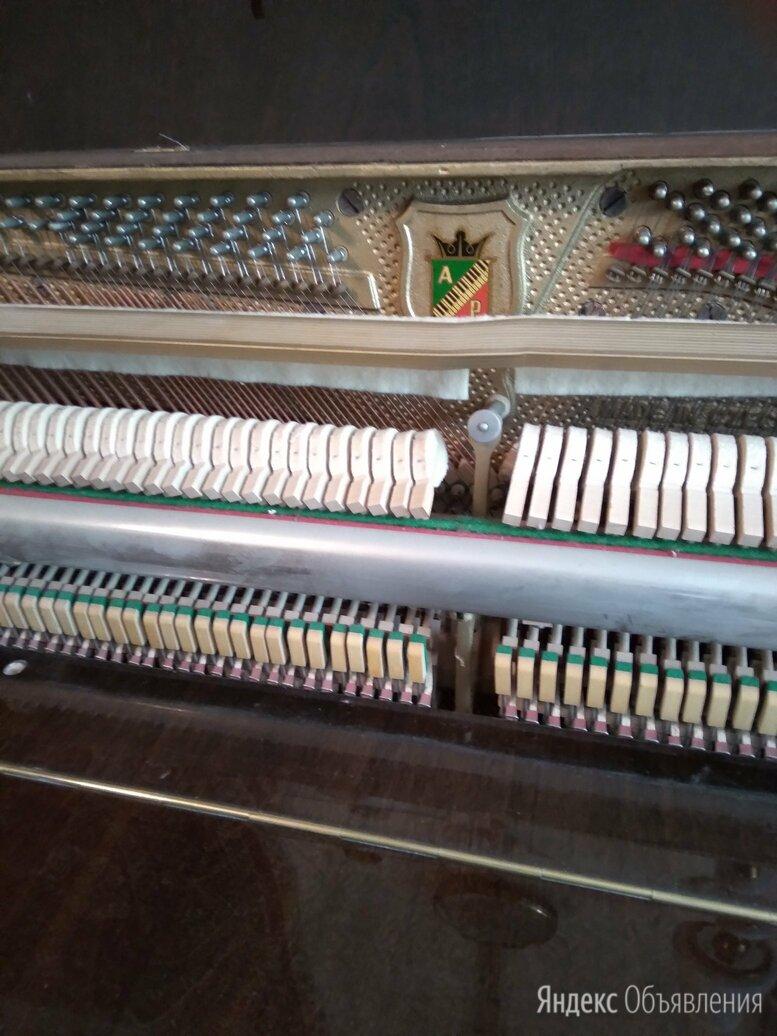 аккордеон кампанелла по цене 50000₽ - Аккордеоны, баяны, гармони, фото 0