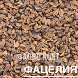 Семена - Фацелия, 0