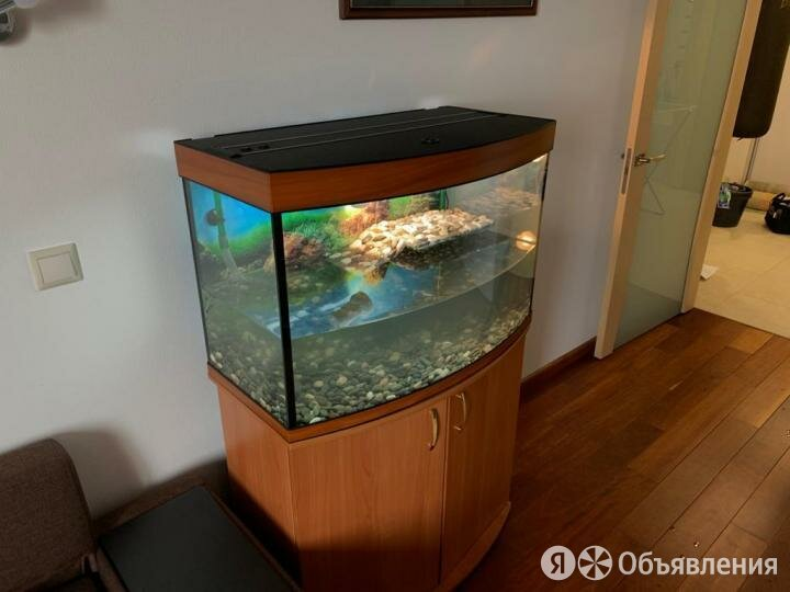 Аквариум для черепахи 160л панорамный. Новый. по цене 10600₽ - Аквариумы, террариумы, тумбы, фото 0
