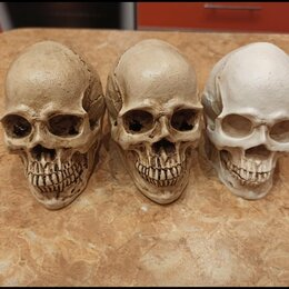Статуэтки и фигурки - Сувенир череп, 0