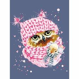 Рукоделие, поделки и товары для них - Картина по номерам Зимняя сова (30х40 см), 0